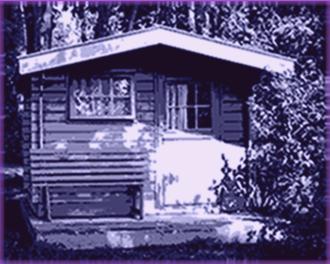 dachrinnen für gartenhaus