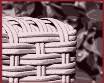 polyrattan möbel günstig